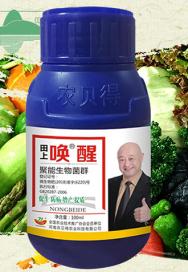 拌种剂厂家农贝得介绍微生物菌剂的作用