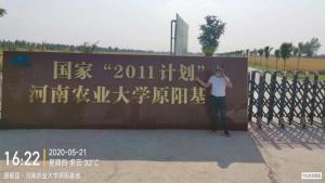 菌绿通在原阳县郭教授研发基地验收反馈