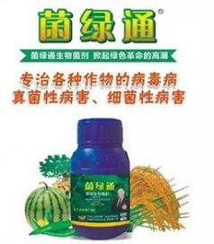 菌绿通生物菌剂的客户效果案例