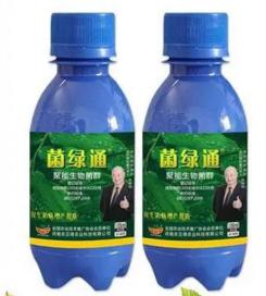 """河南农贝得农业科技公司研制出""""菌绿通""""生物菌剂替代化学农药"""