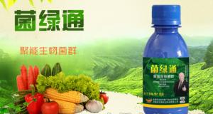 生物菌剂对农作物生长发育的作用
